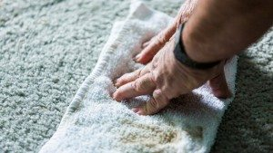 Mt. Pleasant Carpet Cleaning & Upholstery Cleaning